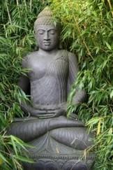 cvandewal
