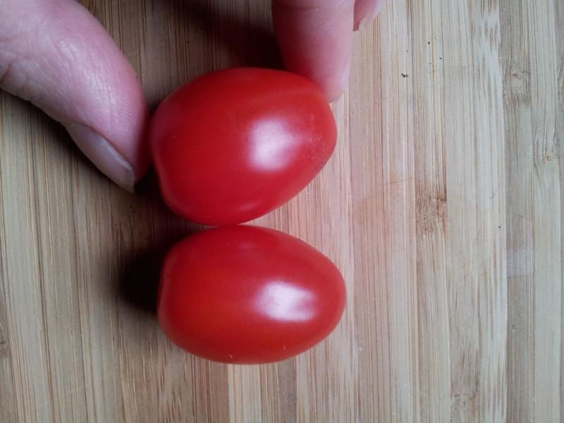 Tomaatjes selecteren.