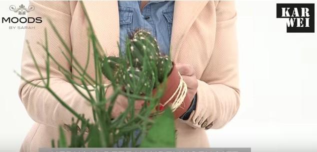 De overige plantenpotten bekleden