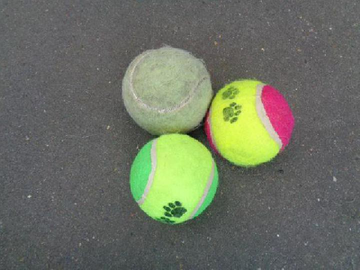 Welke tennisbal kun je voor dit hondenspeeltje gebruiken?