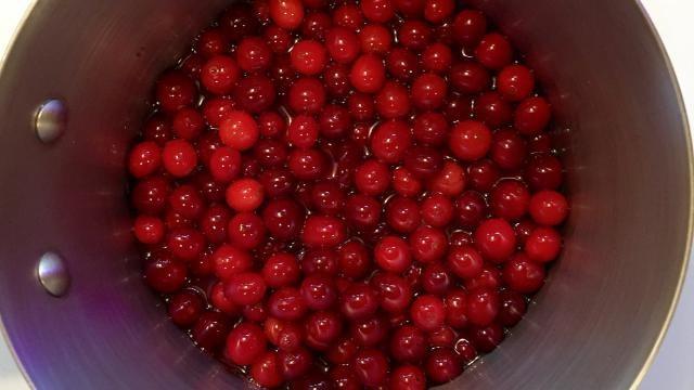 Hoe kun je zelf Cranberrysaus maken?