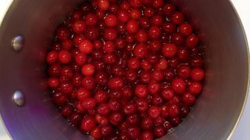 Hoe kun je zelf Cranberrysaus maken