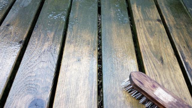 Groene aanslag verwijderen van hout of tegels: effectief en makkelijk.