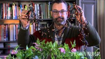 Een landelijk kerststuk maken voor buiten met Helleborus planten