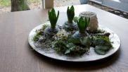 Bloemschikken een bloemstuk maken van hyacint bloembollen in een jasje van viltlint