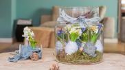 Creatief ingepakte hyacinten bollen in een glazen vaas
