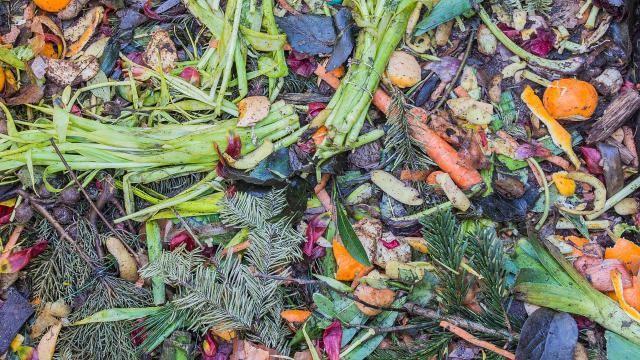Welk keukenafval en tuinafval kun je composteren? Een overzicht.