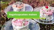 Vogelvoertaart maken kleurrijke cupcakes van vogelvoer