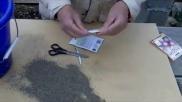 Hoe kun je radijsjes kweken vanuit radijszaad moestuin