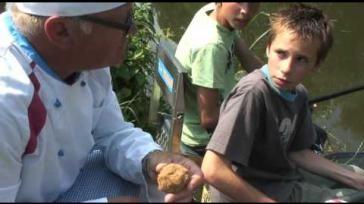 Hoe kun je goed lokvoer aas maken om mee te vissen