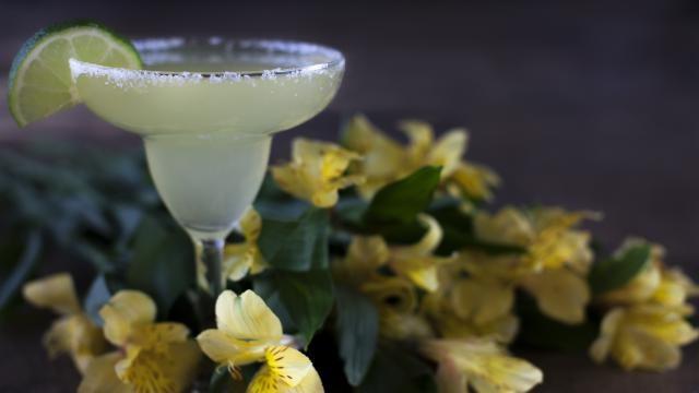 Margarita recept: hoe kun je een eenvoudige en heerlijke Margarita cocktail maken?